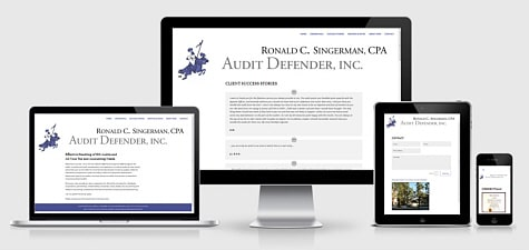 Audit Defender | Ronald C. Singerman, CPA