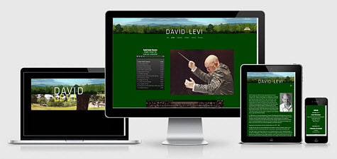 David Levi | Conductor